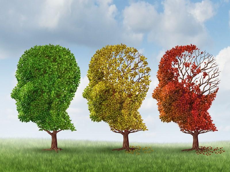 Wereld Alzheimerdag Erp